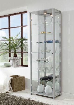 Eckvitrine Glasvitrine Silber mit Spiegelrückwand und LED Beleuchtung